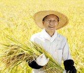 4月に迫る「種子法廃止」は、なぜ異例のスピードで成立したのか?