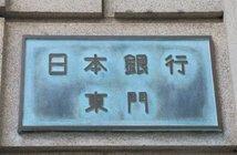 TK Kurikawa / Shutterstock.com