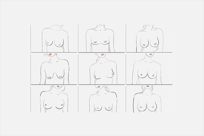 おっぱいのプロによるとおっぱいの形は9種類あるらしい。ThirdLove胸の形辞典より=三浦茜