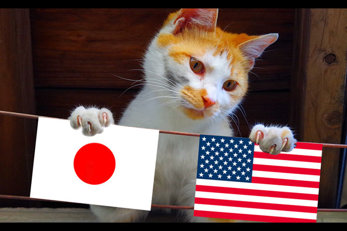 なぜアメリカは世界一強いのか? 現地で感じた日本人の強みと弱点=三浦茜