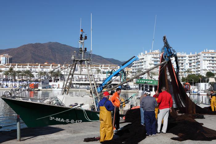日本の漁港にも「IT化の波」…出港時間直前に見られる珍景って!?