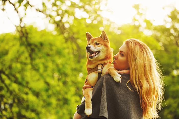 「この感じ……散歩終了か!」帰宅を感じとった飼い犬の抵抗が可愛すぎる♪