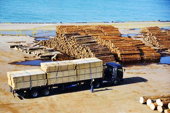 豪雨に負けない森はどこへ…。今国会で成立「森林経営管理法」が日本の山と林業を殺す=田中優