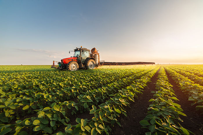 米中貿易摩擦で米国産大豆が大幅下落!米国農家がとった苦肉の策は報われるのか