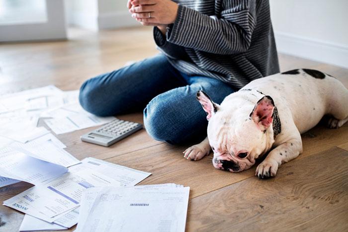 知らないと大損!会社員でも「確定申告で税金が戻る」5つのケースと注意点【2019年版】=川畑明美