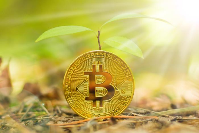 なぜいま、企業が独自の仮想通貨を続々発行?経済構造を変える暗号資産の芽吹きとは=天空の狐