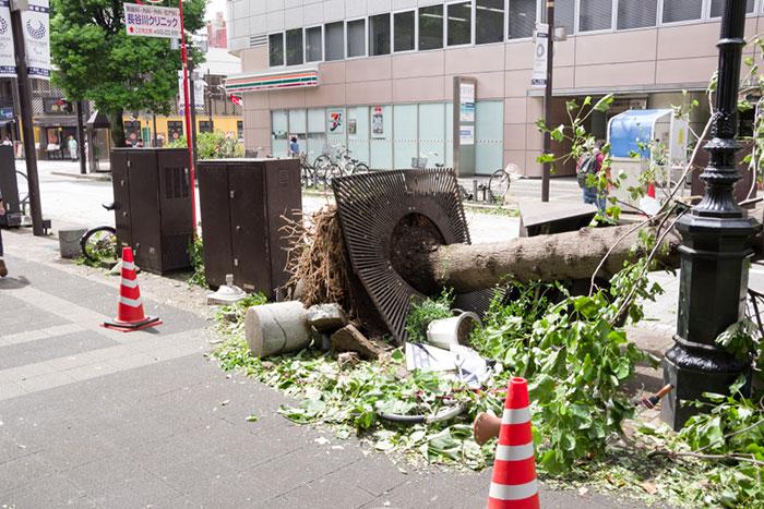 千葉の台風被害は甚大。被災者に伝えたい「火災保険で補償される」可能性=姫野秀喜