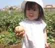 なぜ種苗法改正はひっそり進む?農業も水道も「日本が売られる」=原彰宏