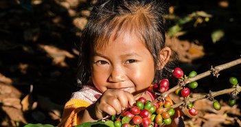 コーヒー豆の高騰で稼ぐ「相場廃人」の行動パターンとは?勝負は初動の前に決まる