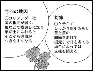 o-vol.26-14