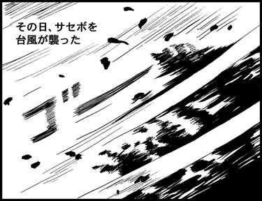 o-vol.29-9