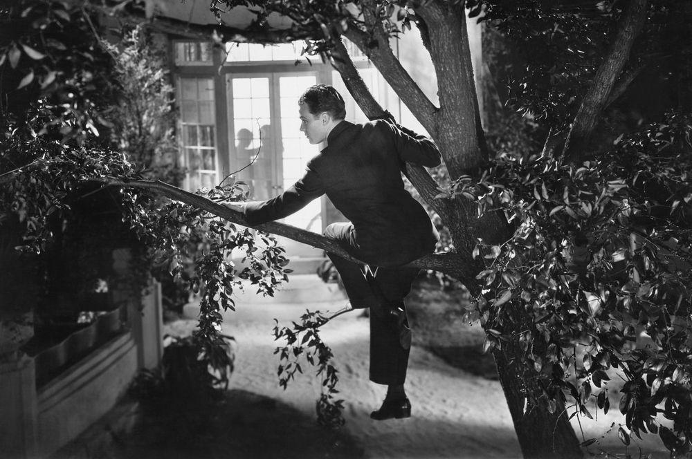 【裁判】若いカップルの営みが外から丸見え。興奮した男が家に侵入してナニをした