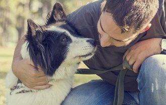 たとえ臭くても…犬は飼い主さんの匂いが好き、という研究結果
