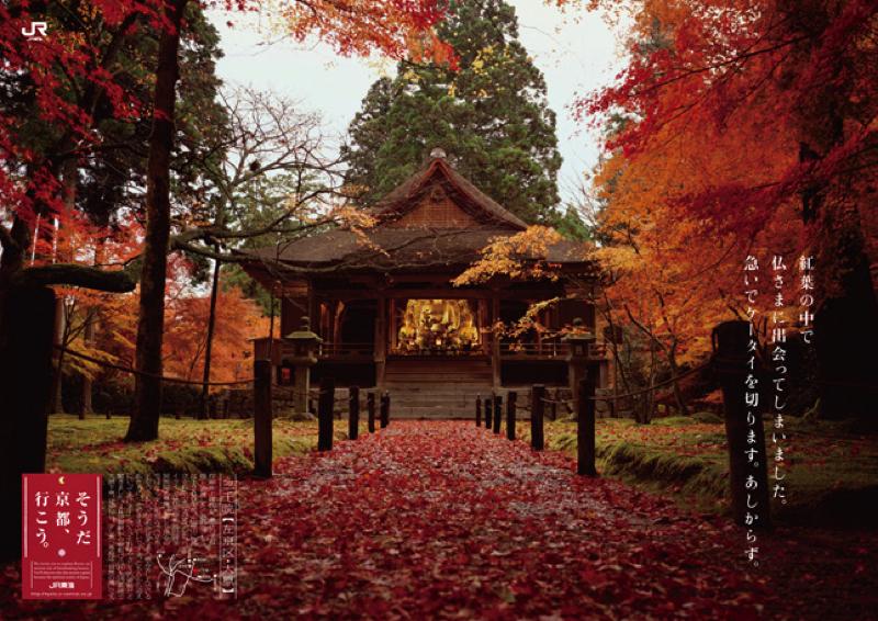 2008_autumn copy