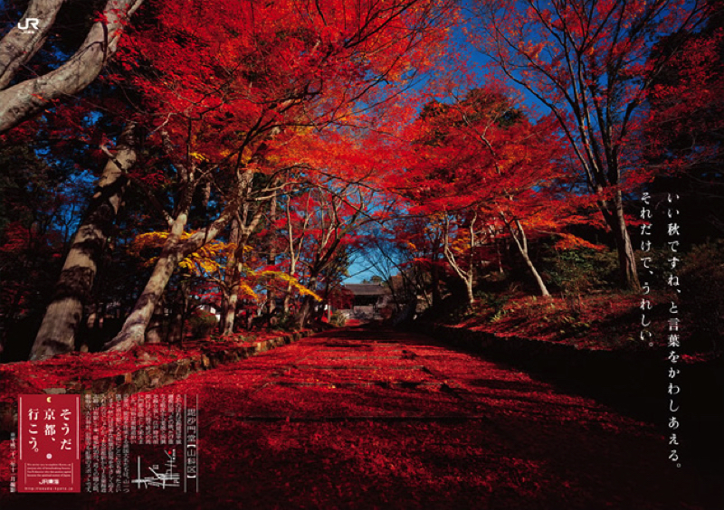 2011_autumn copy