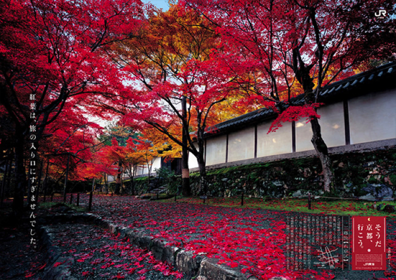 2012_autumn copy