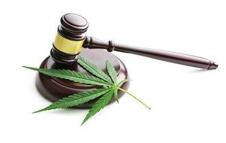 【傍聴記】元チェッカーズ武内享、息子の大麻裁判でみせた涙の意味