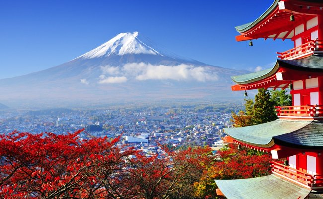 外国人が日本旅行でショックをうける、「20」のヘンな