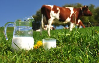 健康神話崩壊。「低脂肪ミルク」に隠された代用品の甘い罠