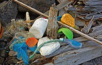 日本海の漂流ゴミに異変。北朝鮮から謎の「歯磨き粉」が相次ぐワケ