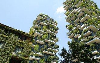 都会だし、マンションごと森にしてしまおう。これがホントの森ビル