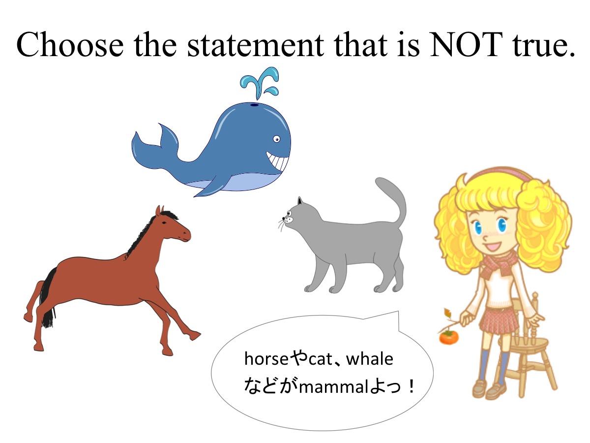 小学3年生 理科「哺乳類の特徴」