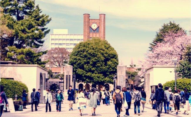 東京大学、日本の大学