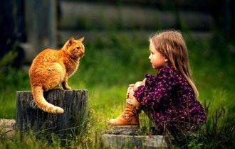 ネコ好き急増は寄生生物が原因? 人の心をも操るトキソプラズマ