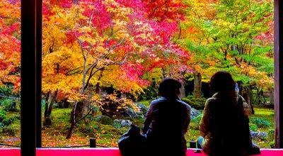 京都100連泊プラン