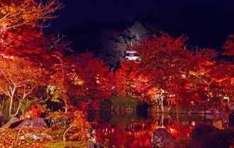 まさに王道。京都で紅葉を愛でる、大人の極上コースを歩む旅へ
