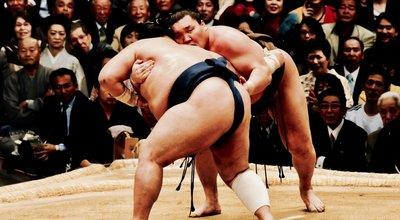 相撲協会 日馬富士 貴乃花 白鵬