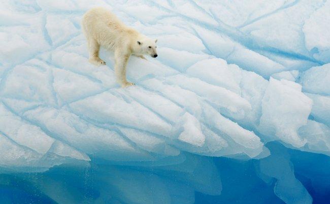 北極 爆弾低気圧 河合薫 異常気象