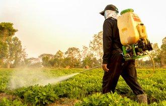 残留農薬を避けたいなら「茹で汁」は捨てて旬のものを選べ