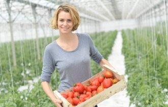 栄養そのまま、しかも長持ち。トマトはこうして「冷凍保存」せよ