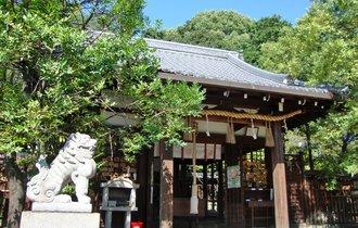 本物の京都通だけが足を運ぶ。歴史的価値高き名所、新熊野神社へ