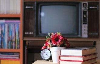 なぜTVのそばに辞書がある家の子は、ボキャブラリーが豊富なのか