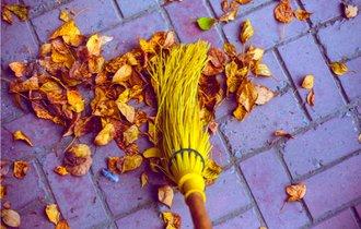 「掃いても掃いても葉っぱが飛んでくる」から学ぶビジネスの教訓