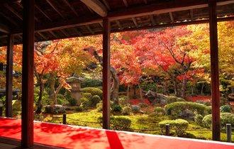 人が集まるのには訳がある。京都一乗寺エリアであなたを待つ紅葉