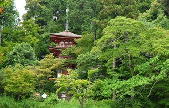 この地に足を運んでこその京都通。古刹・浄瑠璃寺にまつわる秘密