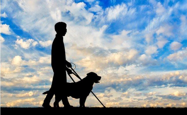 NYの奇跡。伴走者ではなく「伴走盲導犬」とハーフマラソンを完走