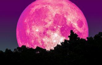 平成最後の満月は「ピンクムーン」。4月19日は夜空を見上げよう