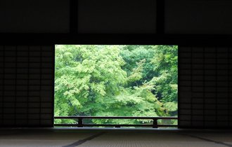 目には京都の青もみじ。初夏なら人影まばらな嵯峨嵐山で見る新緑