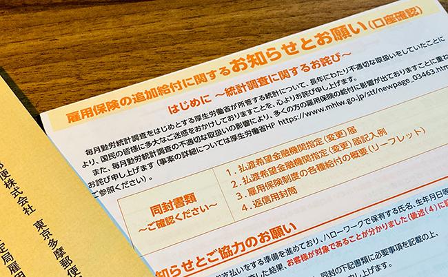 給付 の 雇用 詐欺 追加 保険