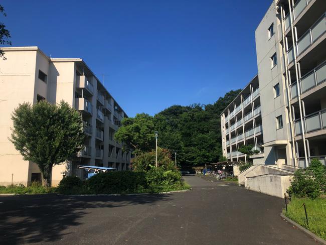 戸山ハイツは都心部にあるにもかかわらず、緑が多い恵まれた住環境が魅力