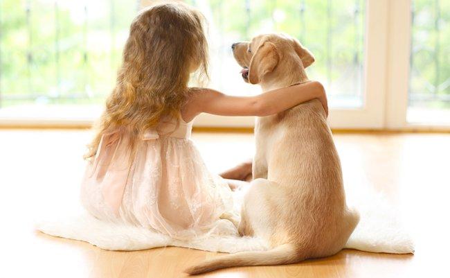 Little,Girl,With,Golden,Labrador,Dog,In,Room